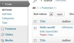 Add a WordPress post - all posts are listed